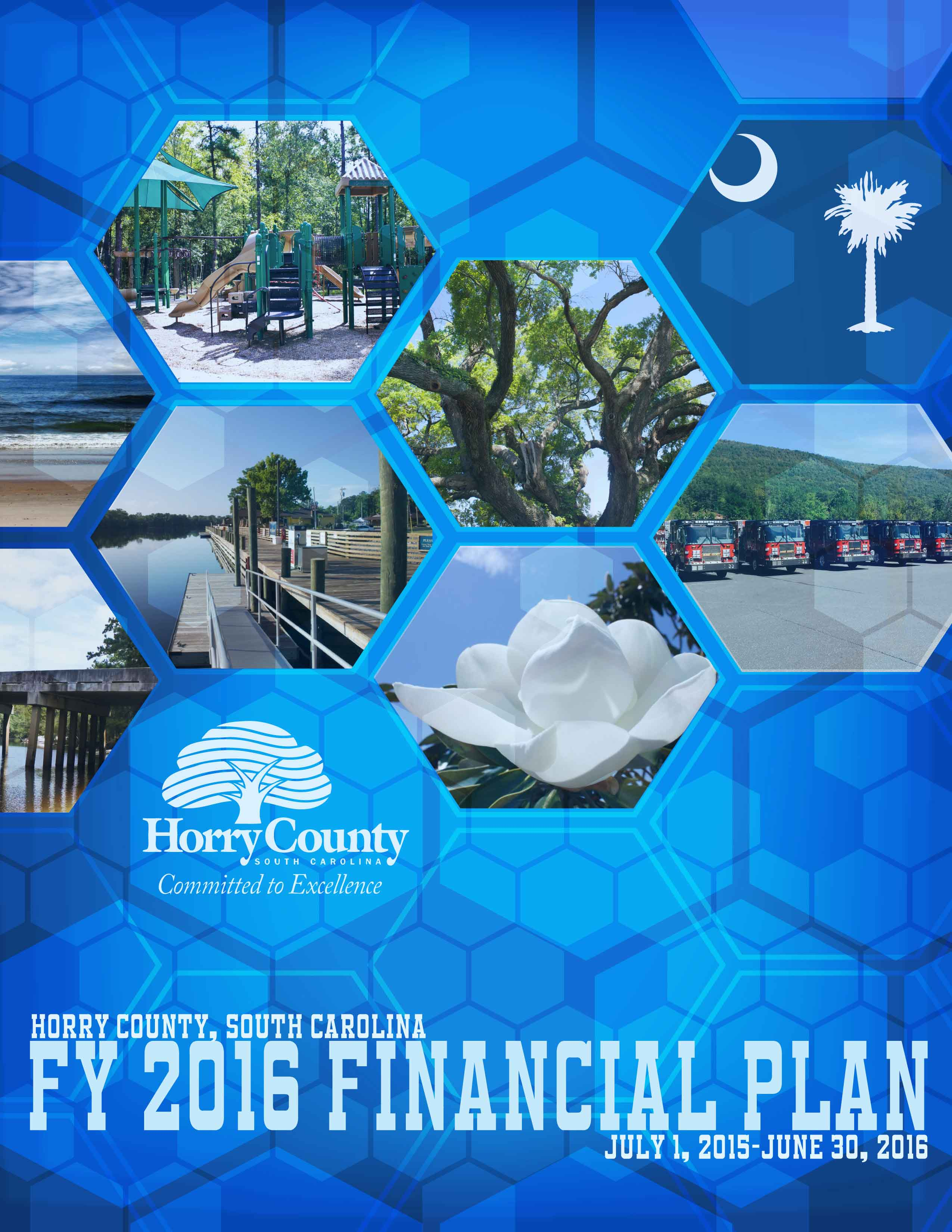 Fiscal Year 2015